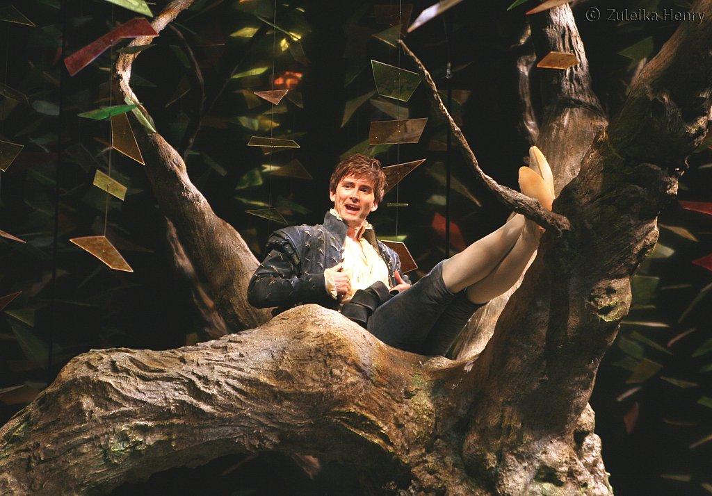 David Tennant as Berowne