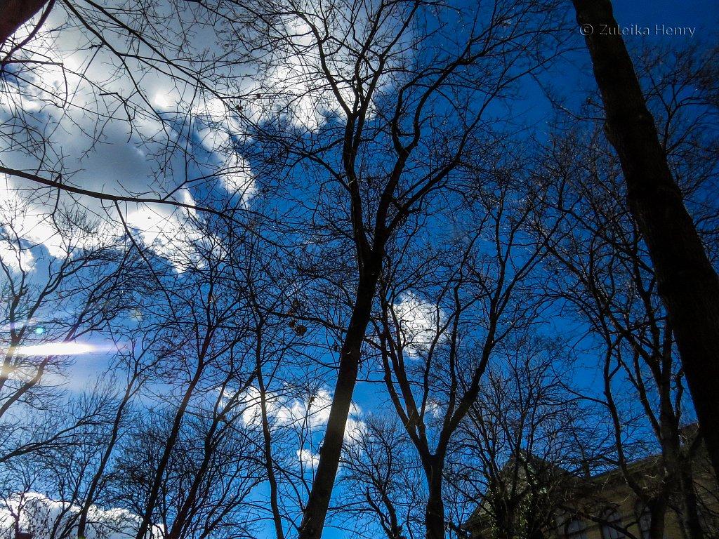 Prague-Zuleika-Henry-20140214-0047.jpg