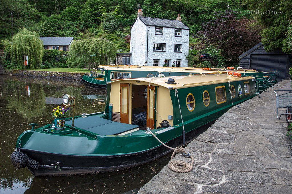 09-Zuleika-Henry-Brecon-and-Abergavenny-Canal-50-shades-of-green.jpg