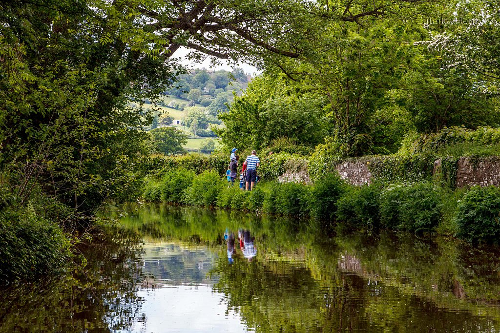 188-Zuleika-Henry-Brecon-and-Abergavenny-Canal-50-shades-of-green.jpg