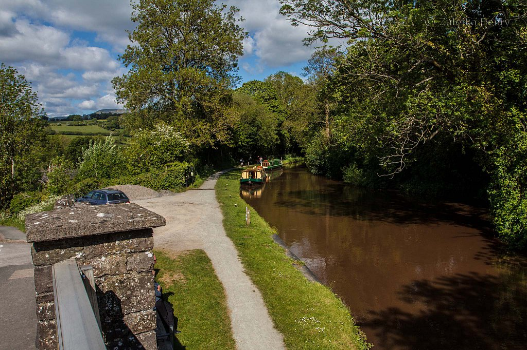 203-Zuleika-Henry-Brecon-and-Abergavenny-Canal-50-shades-of-green.jpg