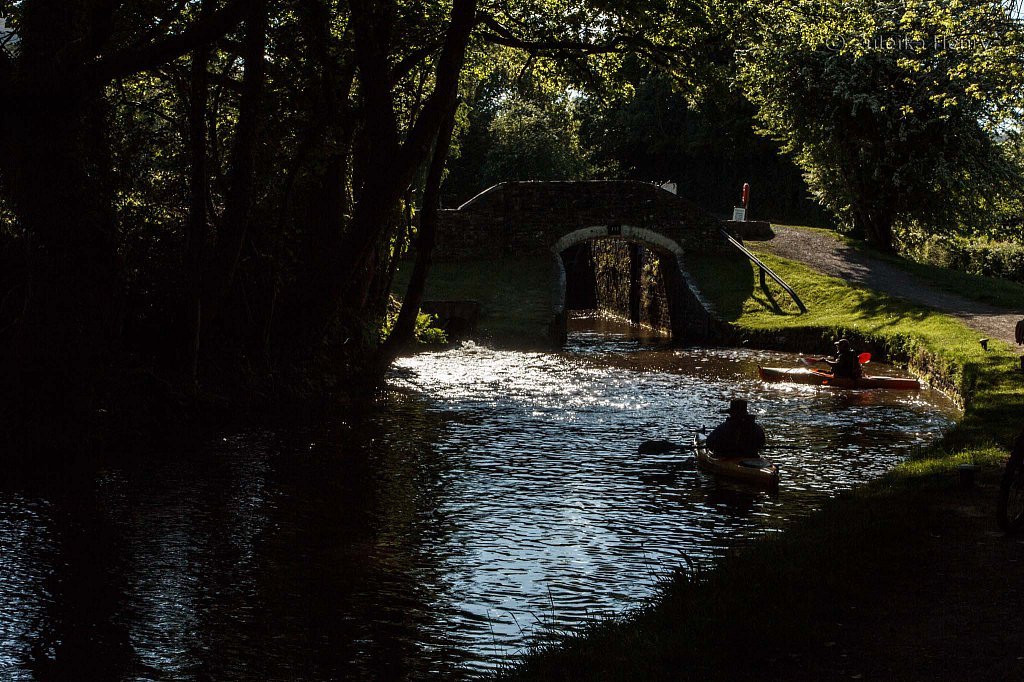 232-Zuleika-Henry-Brecon-and-Abergavenny-Canal-50-shades-of-green.jpg