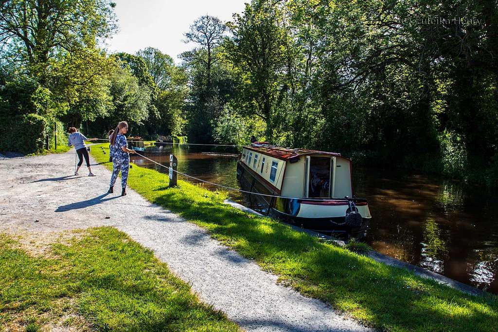 243-Zuleika-Henry-Brecon-and-Abergavenny-Canal-50-shades-of-green.jpg