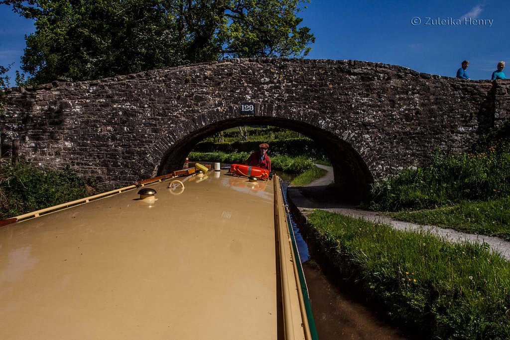 280-Zuleika-Henry-Brecon-and-Abergavenny-Canal-50-shades-of-green.jpg