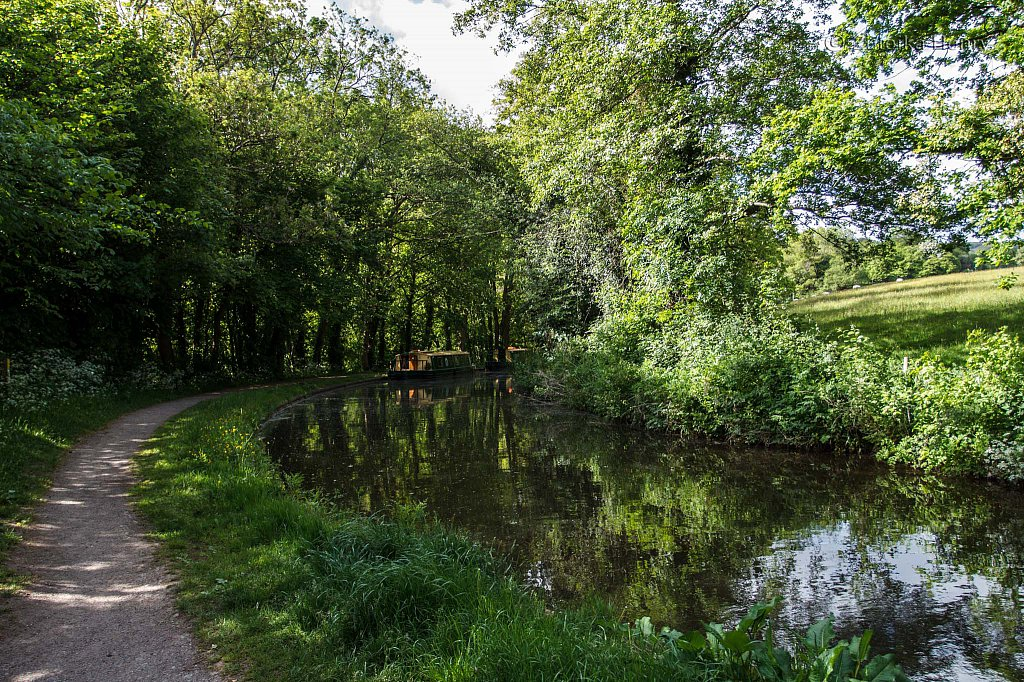 430-Zuleika-Henry-Brecon-and-Abergavenny-Canal-50-shades-of-green.jpg