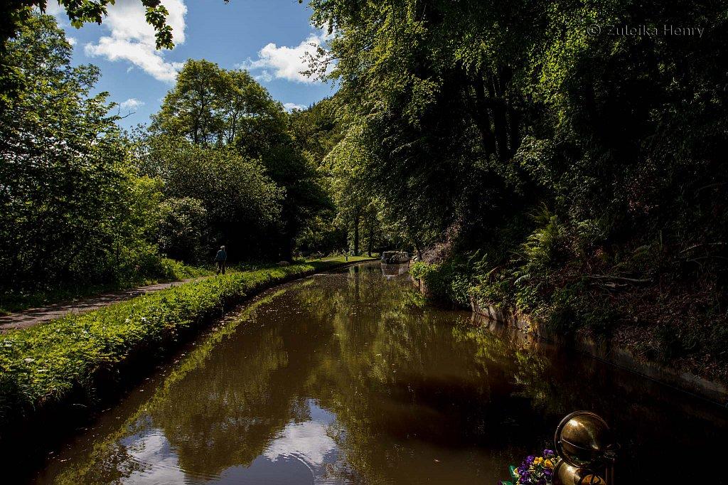 490-Zuleika-Henry-Brecon-and-Abergavenny-Canal-50-shades-of-green.jpg