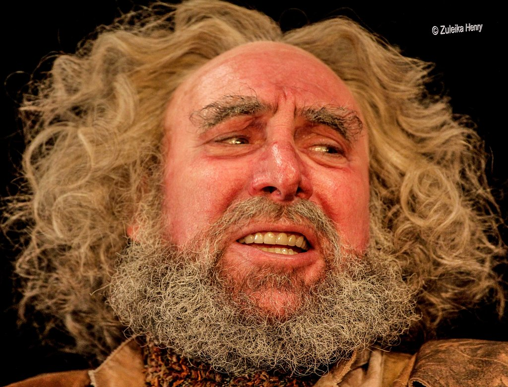 Henry IV parts 1 and 2 2014