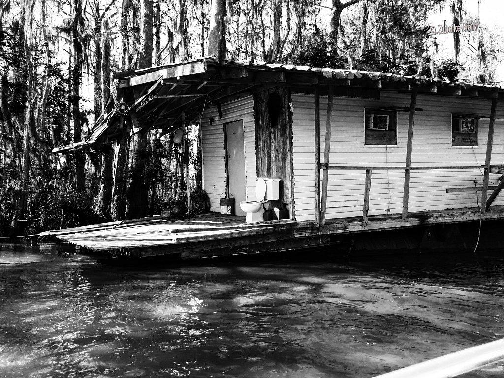 327-Zuleika-Henry-A-Taste-of-New-Orleans-copy.jpg