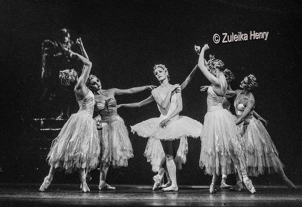 Royal Ballet Swan Lake 1995 Deborah Bull