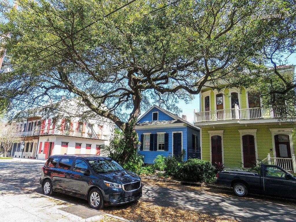 91-Zuleika-Henry-A-Taste-of-New-Orleans.jpg