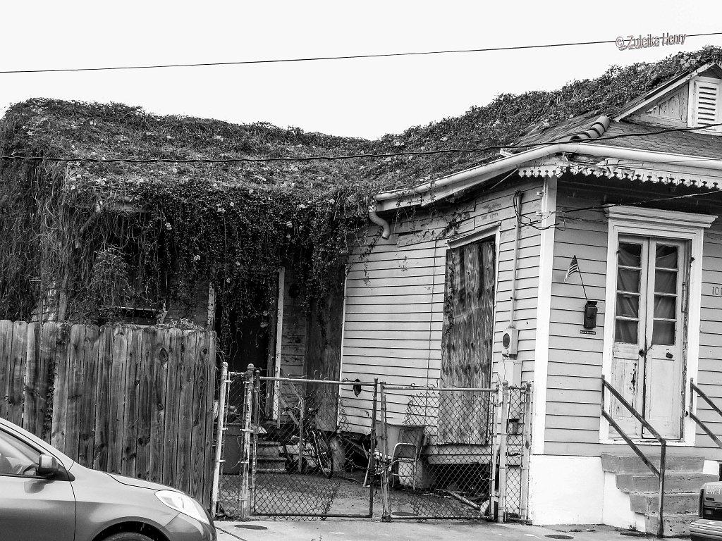 11-Zuleika-Henry-A-Taste-of-New-Orleans.jpg